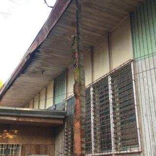 Réparation du toit du foyer étudiant de Butuan aux Philippines