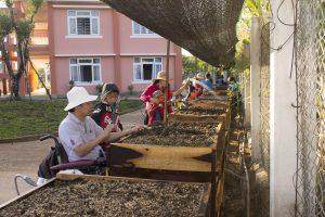 Activité de jardinage à la Maison Chance au Vietnam.
